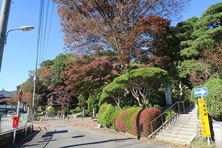 11・貫井神社・真明寺.jpg