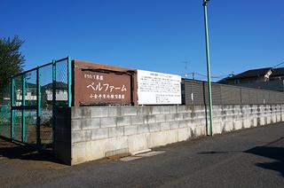 6・ベルファーム.JPG
